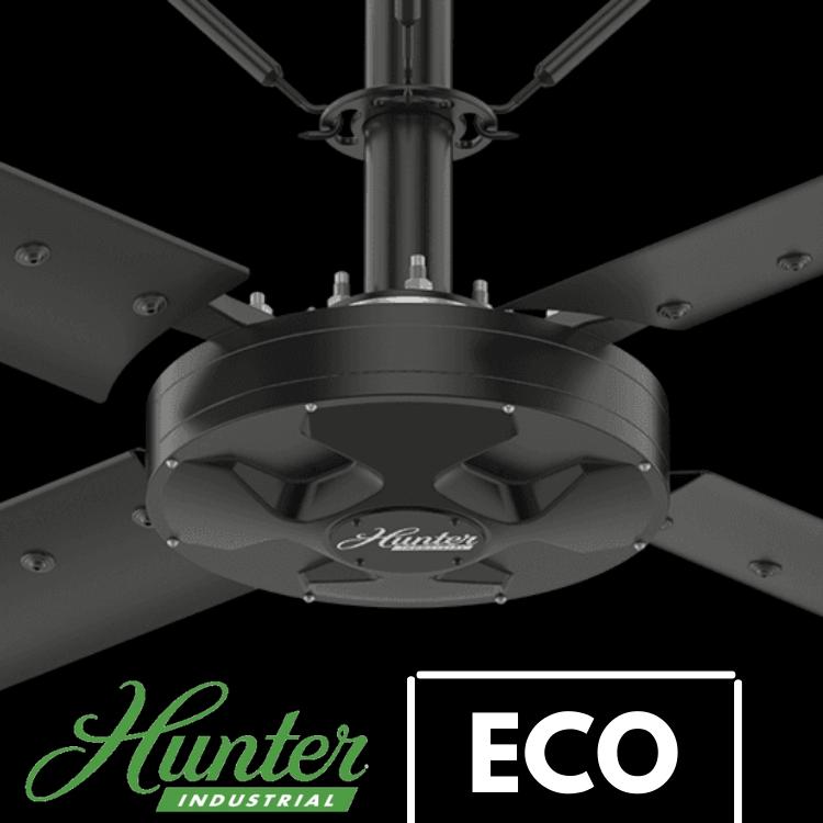 Hunter Eco Fan